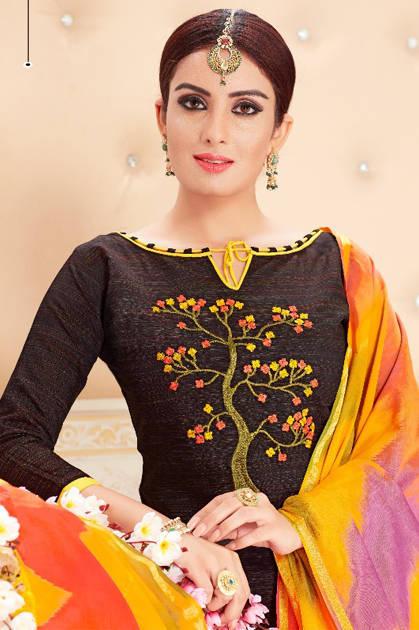 Raghav Novika Salwar Suit Wholesale Catalog 12 Pcs