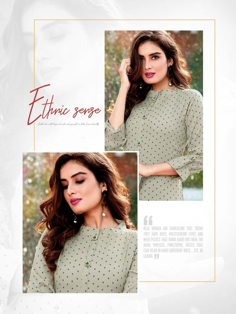 Ladies Flavour Decent Kurti Wholesale Catalog 6 Pcs 4 - Ladies Flavour Decent Kurti Wholesale Catalog 6 Pcs